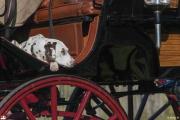 160910_059_WKB3090cc